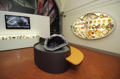 ANMS - Associazione Nazionale Musei Scientifici | MUSEO DI STORIA NATURALE - Università degli Studi di Firenze