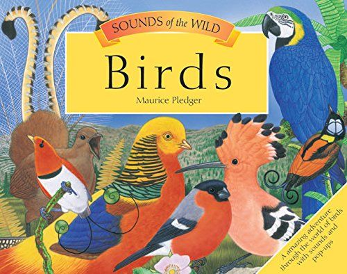 Sounds of the Wild: Birds (Pledger Sounds) by Maurice Ple... https://www.amazon.com/dp/1626864179/ref=cm_sw_r_pi_dp_x_A.D5ybMDPVV9M