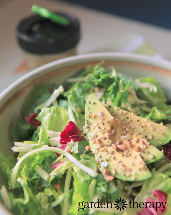 Raw Energy Shaker Recipe - such an easy and healthy way to add raw seeds to salads, soups, sandwiches...well, pretty much anything!