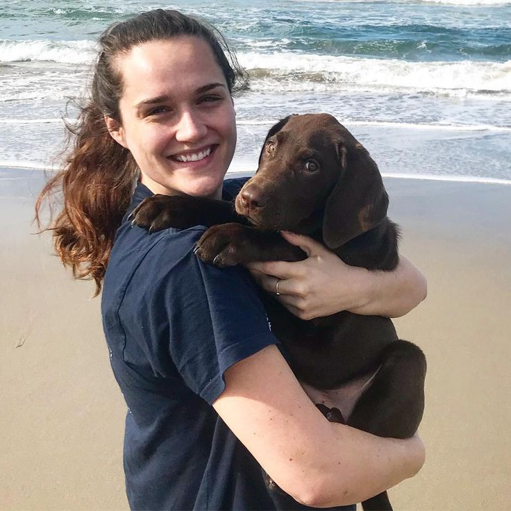 Can't believe you will be so much bigger the next time I squeeze you! #Wrigley  #Beach #Throwback #tbt #Puppy #Pupper #Doggo #California #CA #VAFB #Lompoc #BrownBeach #Waves #Ocean #Dog #LabsOfInstagram #DogsOfInstagram #ChocolateLab #Labrador #kcco #pup