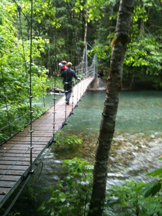 Grove of the Patriarchs (Mount Rainier National Park, WA): Top Tips Before You Go - TripAdvisor