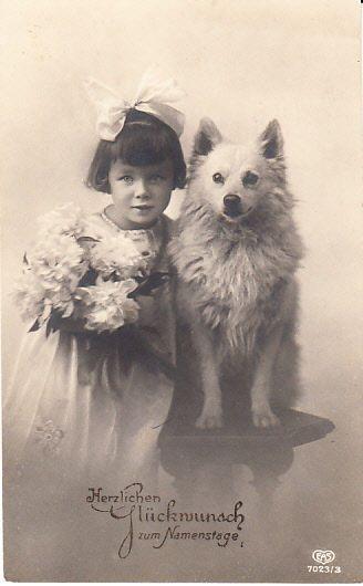 Hunde  Spitz  Keeshond  & Kind    Alte  Postcard