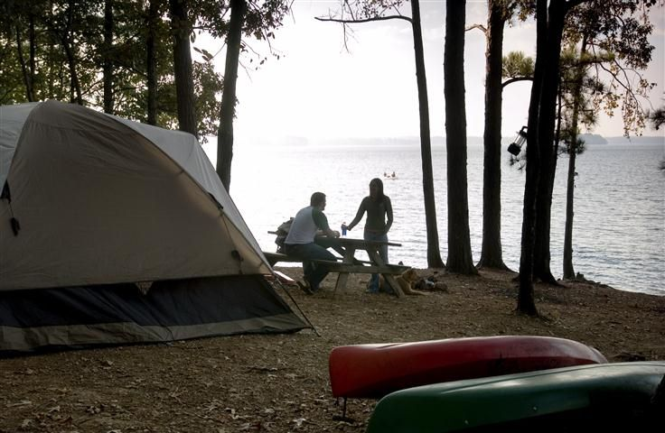 1658 best south carolina images on pinterest south for Lake murray fishing hot spots