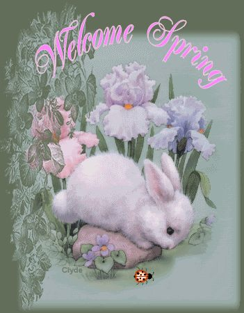 Welcome Spring spring flowers animated season happy spring spring greeting spring quote