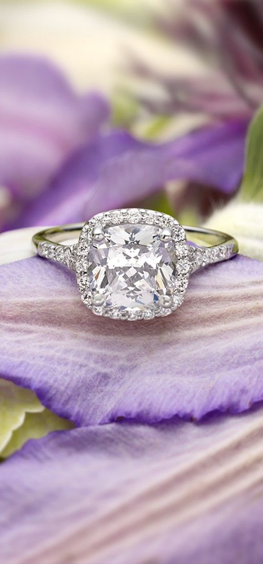 A glittering softened halo of pavé-set diamonds surrounds the center diamond in this dazzling engagement ring.