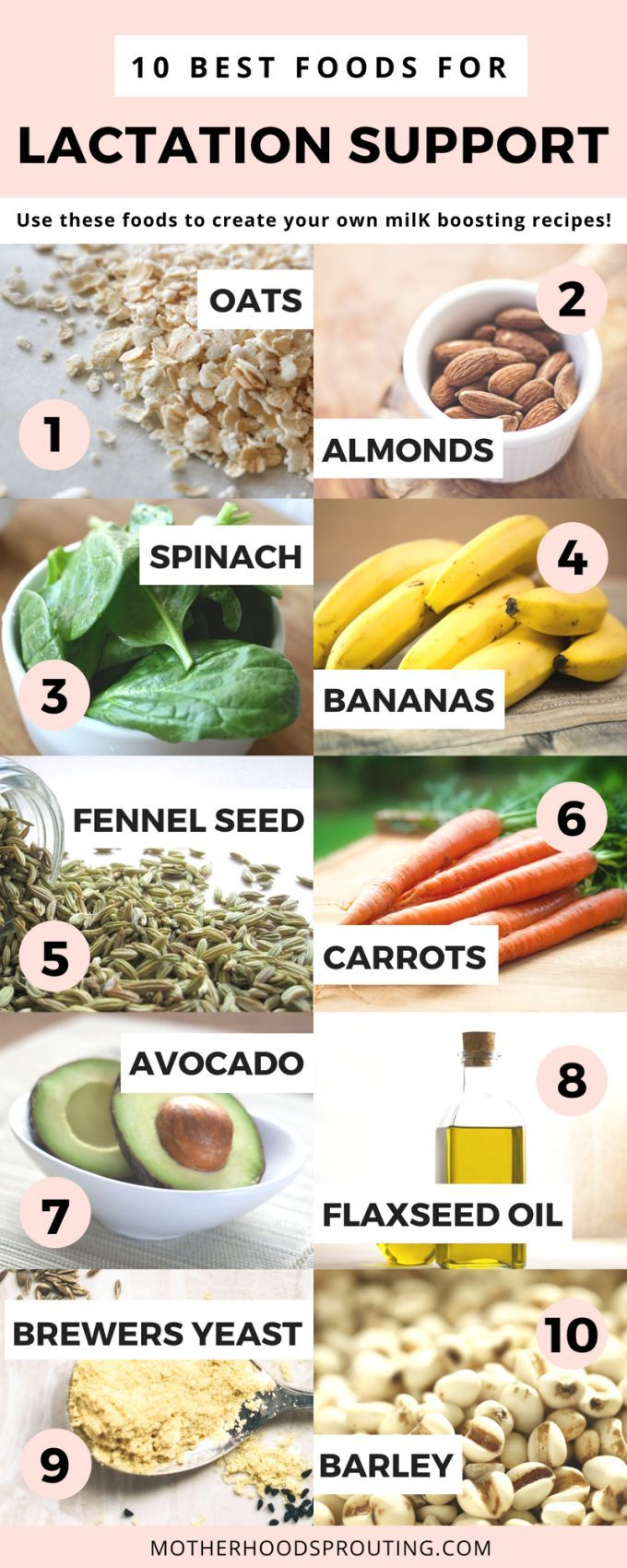 Lactation Recipe Round Up! If you are struggling with your breastmilk supply, re…