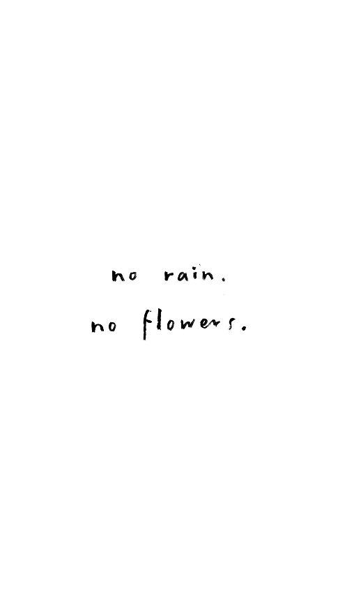 simple truths | no rain, no flowers