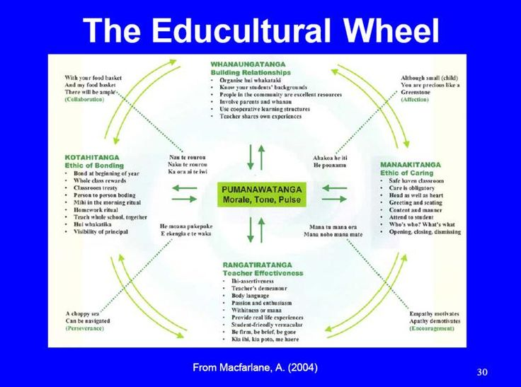 educultural wheel - Google Search