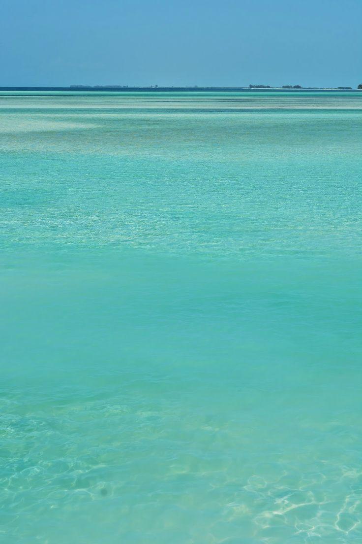 Incredible ocean at Cayo Largo Del Sur, Cuba. #luxlifeincuba #wanderlust #bucketlist #travel