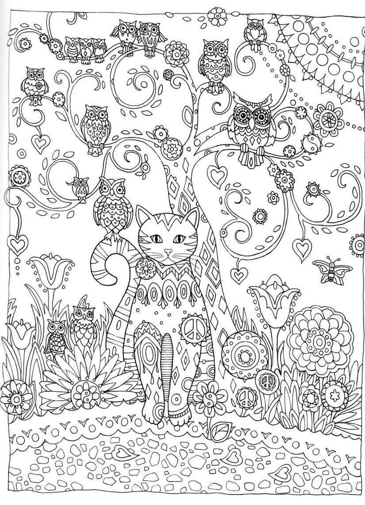Intricate Cat Coloring Pages : Best images about intricate coloring on pinterest