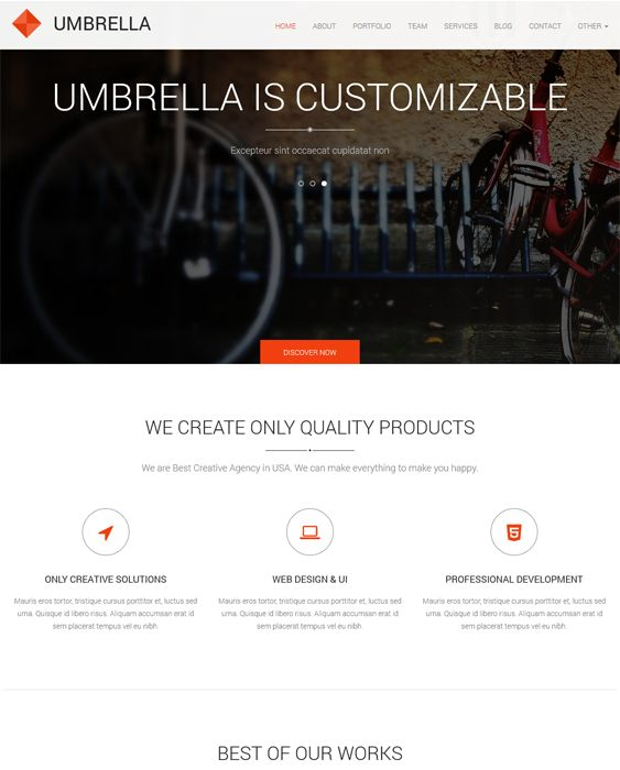 Umbrella is a clean, responsive one page WordPress template which includes a premium image slider, sticky header, Google Font compatibility and more.