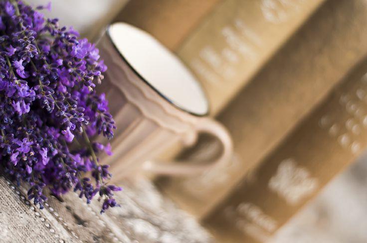 levendula, lavender