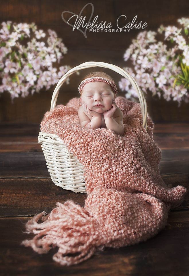 Melissa calise photography newborn baby girl chin hands posing ideas spring flowers basket photo shoot