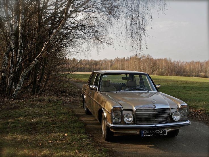Golden Mercedes Benz W115, 1976, Poland,