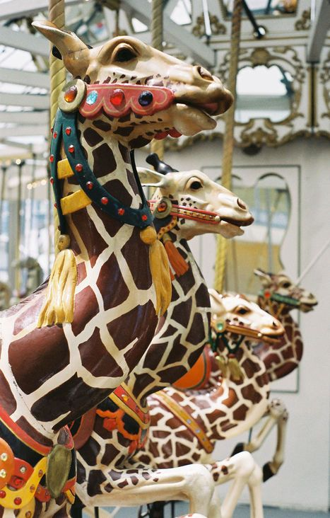Children's Creativity Museum Carousel at Yerba Buena Gardens  Looff Outside Row Jumping Giraffe Head Close-Up  © Aaron Shepard