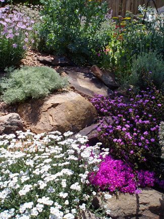 1000 ideas about water wise landscaping on pinterest for Landscaping rocks albuquerque