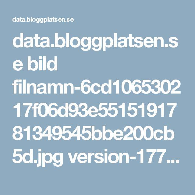 data.bloggplatsen.se bild filnamn-6cd106530217f06d93e5515191781349545bbe200cb5d.jpg version-177473b16f0fa5200ecdb12b2ba9830e