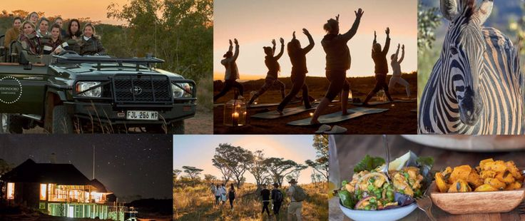 MOHONDORO GAME LODGE Detox and Yoga Safari (20 - 25 NOVEMBER 2017)  Mhondoro Game Lodge has teamed up with a renowned international yoga instructor and detox specialist, Monique Christiaans of Yoga Zenzo in the Netherlands, to present an exclusive six-day/five-night Detox and Yoga Safari at the five-star lodge in the Welgevonden Game Reserve (Limpopo).  BOOK NOW!! Early booking is recommended as numbers are limited (minimum number of six guests required) www.mhondoro.com