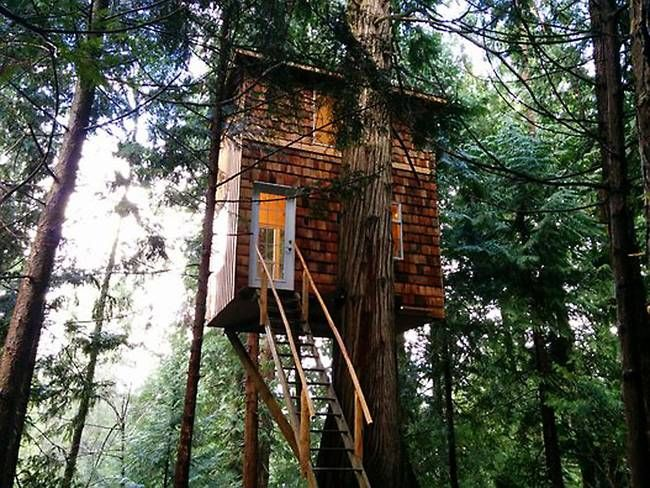 Man bouwt 165 vierkante ft kleine boomhut op het eiland voor $ 8200 (Video):.. TreeHugger