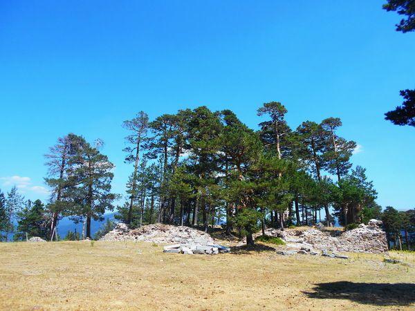 Casa de Eraso. Estas ruinas dieron lugar a la leyenda del monasterio templario de Casarás