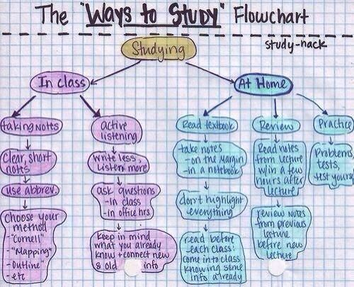 Ways to Study Flowchart - #College, #Learn, #School, #Study