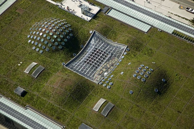 The living roof of the California Academy of Sciences in San Francisco, CA