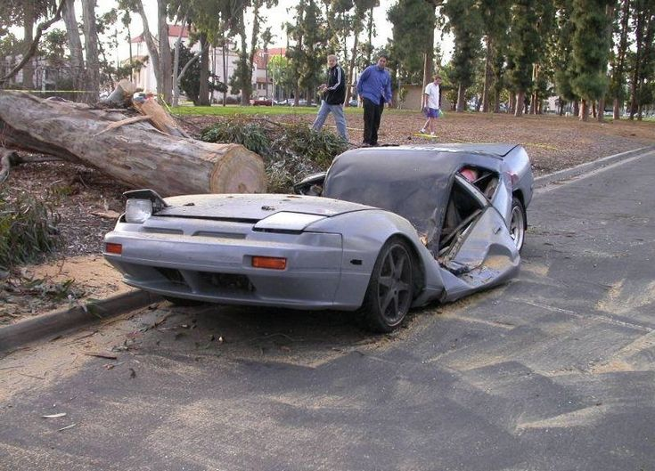 Tree fall on a car