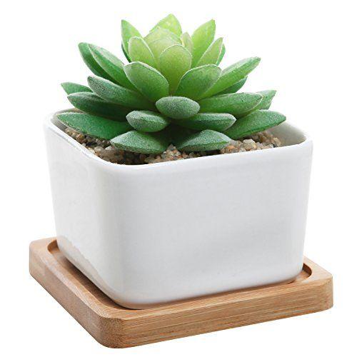 Modern Decorative Small White Square Ceramic Succulent
