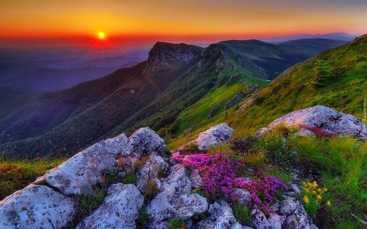 Góry, Kamienie, Kwiatki, Bałkański, Wschód, Słońca
