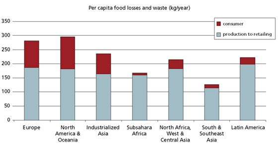 Key facts on food loss and waste you should know!  FAO   Food and Agriculture Organization of the United Nations
