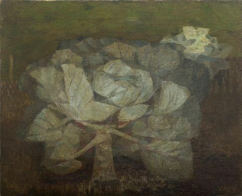 Cabbage  1949  oil on canvas  Prunella Clough