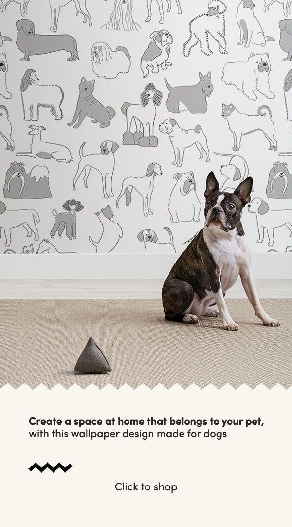 Sausage Dog Wallpaper Mural Muralswallpaper In 2020 Dog Wallpaper Animal Wallpaper Bulldog Wallpaper