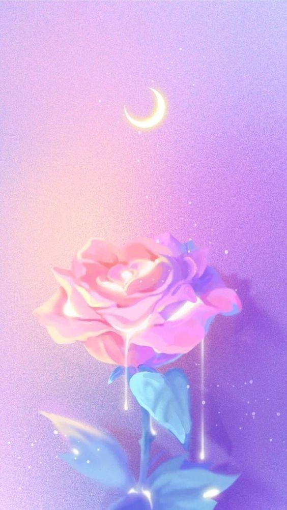 Flor no espaço – Wallpaper 564 X 1003