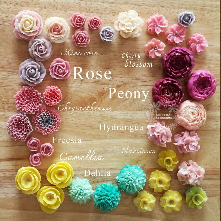 Flower names #buttercream #butterblossoms #flowername