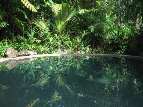 Daintree Rainforest Retreat Motel Cow Bay Surrounded by the Daintree Rainforest National Park this environmentally-friendly retreat features a secluded outdoor swimming pool and a tour desk that can help you plan activities in the surrounding areas.