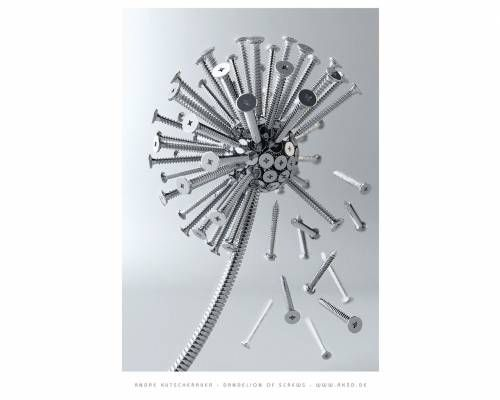 Dandelion of screws by A. Kutscheraer