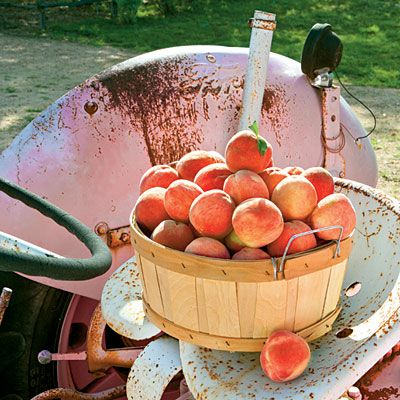 Fun things to do in the Texas hill country. Great article from Southern Living magazine.