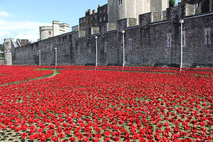 888,246 Ceramic Poppies Will Fill The Moat At The Tower Of London [to mark the 100-year anniversary of the First World War]