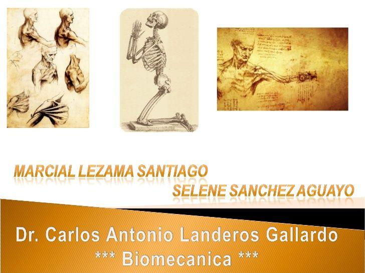 Mejores 8 imágenes de biomecánica en Pinterest | La rodilla ...