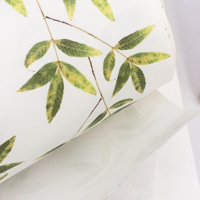 Last day at @countrylivingfairs and what an amazing experience it has been so far! Come and join us for the last day at Alexandra Palace ☀️ the sun is out and we have lots of floral inspired products like this leaf wallpaper to bring Spring into your home 🌿