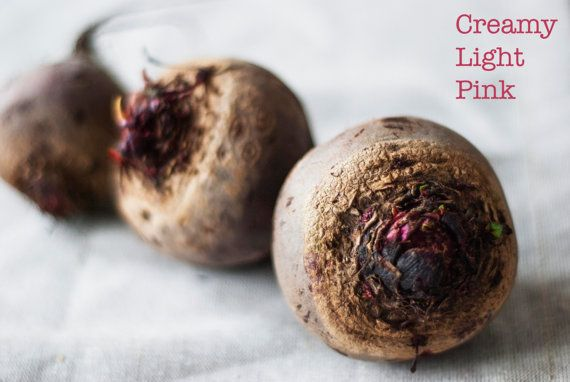 food photography of red beets, available as instant download in my etsy store.
