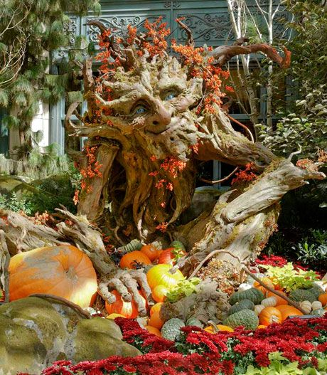 Let us have a peep on their jaw-dropping seasonal Bellagio display for Fall in Las Vegas Strip in Paradise, Nevada.