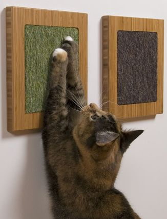 Framed varieties of carpet scraps for those pesky little felines- great idea and not hideous if well chosen and well placed