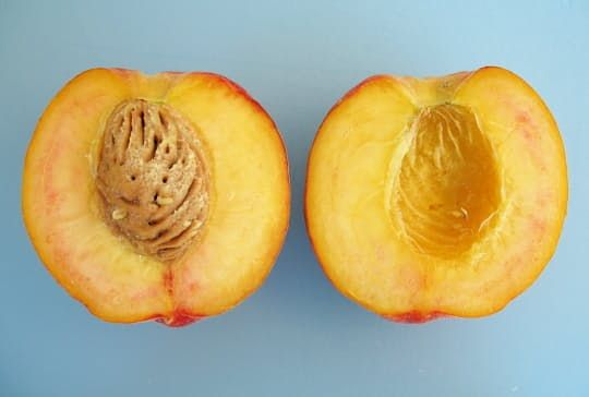 Though the fruits are starting to roll in at nation-wide farmer's markets, it's still early enough in many places that an unripe peach or too-tart apple might make its way into the mix. If you find yourself with such a fruit, don't throw it away: cook it! Here's how...