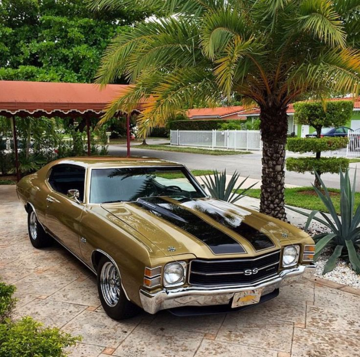 82 best Chevrolet chevelle images on Pinterest   Chevrolet chevelle ...
