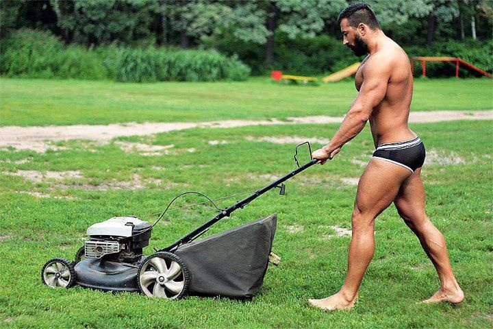 How To Mow The Lawn in 30 Easy Steps