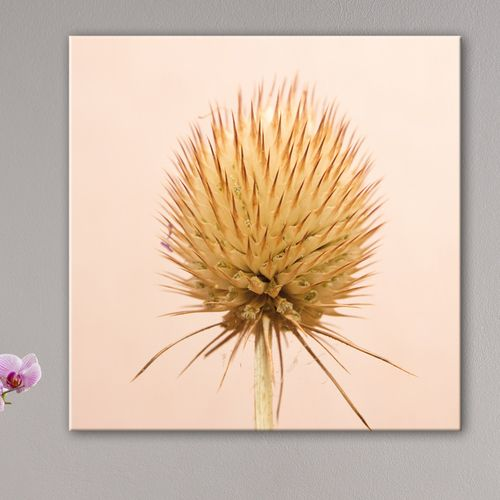 43 best images about tableau nature on pinterest roses for Deco interieur epure