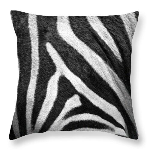 "Zebra Stripes Throw Pillow by Racheal  Christian. Our throw pillows are made from 100% spun polyester poplin fabric and add a stylish statement to any room.  Pillows are available in sizes from 14"" x 14"" up to 26"" x 26"". Each pillow is printed on both sides (same image) and includes a concealed zipper and removable insert (if selected) for easy cleaning."