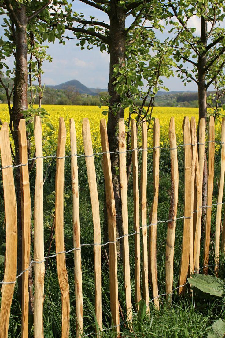50 besten Staketenzäune für den Bauerngarten Bilder auf Pinterest