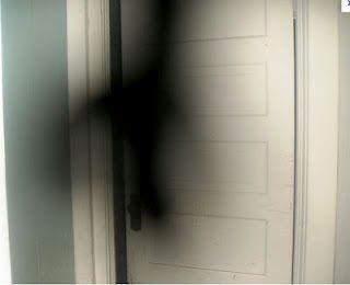 Shadow Mist that was moving quickly through the home and then caught in a doorway...